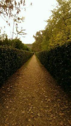 Mura ferraresi