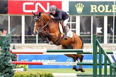 Grand Prix Show Jumping - this is Leslie Howard, I've always loved watching her in the ring, she's fearless!