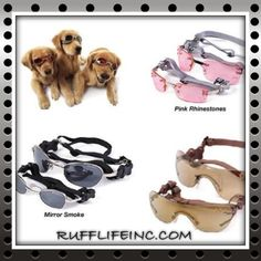 Doggles. Available in all 3 colors. In many sizes. Use coupon code PAWS20 for 20% off @ Rufflifeinc.com