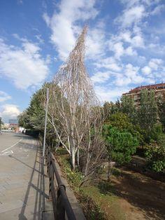 Landart Baum in Barcelona Foto Hansjörg Renner