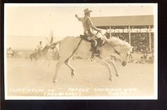 USA Wyoming Sheridan RODEO Papago Helm RP PPC Special People, Wyoming, Rodeo, Horn, Cowboys, Moose Art, History, Usa, Animals