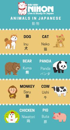 Animals in Japanese. We are a FREE service that specializes in helping students live and study in Japan. Learn Japanese Beginner, Learn Japanese Words, Study Japanese, Japanese Kanji, Japanese Culture, Learning Japanese, Learn Chinese, Learning Italian, Japanese Quotes