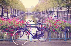 Rower. Wiosna w Amsterdamie - fototapeta