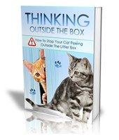 Cat Training Stop Litter Box Problems