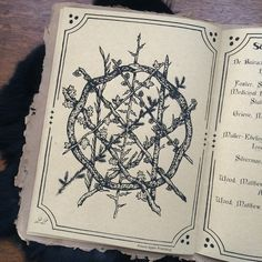 The Hedge Witch's Herbal Grimoire, written by Alison Garber (Native Apothecary) and Adrienne Rozzi (Poison Apple Printshop). Screenprinted and bound by hand, limited edition of 80. (sold out)