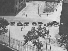 German troops withdrawing from Rome, Italy by horse-drawn carts, Jun 1944 - pin by Paolo Marzioli