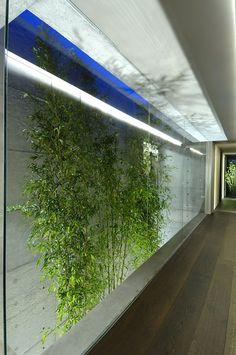 Patio interior Visto desde Planta alta. Excelente iluminación natural y artificial