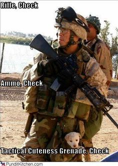 Tactical Cuteness Grenade? Check! Ahhhh! I think I just died.