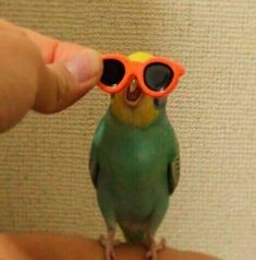 BORB He while He style But most important He smile