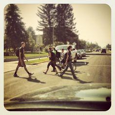 MSU Traffic Jam- An everyday occurrence | LivingBozeman.com Montana State University, Concert, Image, Concerts