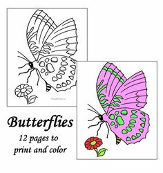 Butterfly coloring pages - Free, printable sheets and pictures
