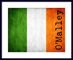 Ireland Flag  Custom Flag  Print Poster by davidsphotography