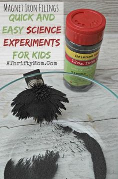Quick and Easy Science Experiments for Kids, Iron Shavings, Magnetic Iron Filings, #Science, #Kids Science Projects, #EasyScienceProjects