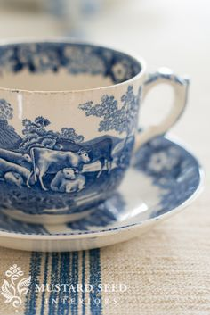 Blue and white country cup and saucer.