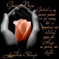 Gebed is my spesiale geskenk aan jou Good Night Blessings, Good Night Wishes, Good Night Sweet Dreams, Good Night Quotes, Day Wishes, Evening Quotes, Evening Greetings, Goeie Nag, Goeie More