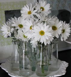 When I have a home of my own, I will have fresh daisies everywhere all the time.