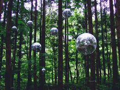 Disco balls suspended amongst trees at the Fuji Rock Festival