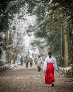 いいね!2,305件、コメント26件 ― YUJIさん(@ig_haruchan)のInstagramアカウント: 「下鴨神社 参道… : 雪の日の朝はより一層厳かな雰囲気でした : #ニコン #loves_nippon #photo_jpn #lovers_nippon #light_nikon…」