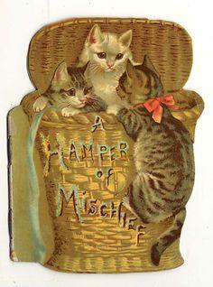 HAmper of Mischief ~ London: Raphael Tuck, 1895 Vintage Greeting Cards, Vintage Christmas Cards, Vintage Postcards, Decoupage, Vintage Pictures, Vintage Images, Cat Cards, Vintage Children's Books, Crazy Cats