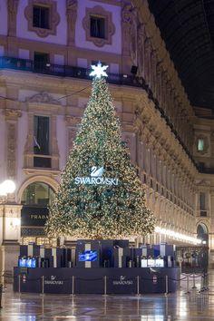 Swarovski illumina il Natale a Milano - Dal 2 dicembre fino al 6 gennaio la storica Galleria Vittorio Emanuele II di Milano sarà arricchita ed illuminata dall'Albero di Natale firmato Swarovski. - Read full story here: http://www.fashiontimes.it/2016/12/swarovski-illumina-natale-milano/