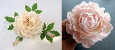 peony rose tutorial right and Queen of Denmark rose tutorial left from TortenTante. With many other flower tutorials an Cake Greek site.