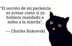 Charles Bukowski, Cool Words, Nostalgia, Wisdom, Thoughts, Humor, Writing, Feelings, Sayings