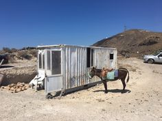 Owner Sebastian spotted this office container for donkey rides in Santorini, Greece!