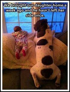 Animals loce unconditionally!!!