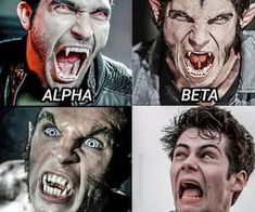 Find images and videos about teen wolf, meme and stiles stilinski on We Heart It - the app to get lost in what you love. Scott E Stiles, Teen Wolf Scott, Teen Wolf Boys, Teen Wolf Dylan, Teen Wolf Stiles, Teen Wolf Memes, Teen Wolf Quotes, Teen Wolf Funny, Dylan O'brien