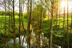 Ann-Kristina Al-Zalimi, spring, kevät, river, bäck, joki, aurinkoinen, sunshine, sunny, puro