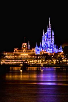 Love Cinderella Castle when it's got the lights on it!