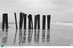 Paalhoofden | Rob Donders Grafisch ontwerp + Fotografie