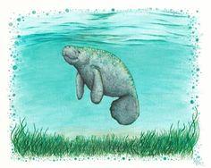 "Amber Marine Gallery ••• ""Mossy Manatee"" textured watercolor and ink painting ~ Endangered species art, March 2016 ~~~~~~~~~~~~~~~~~~~~~~~~~~ #manatee #manatees #siren #mermaid #manateeart #manateepainting #painting #watercolor #artist #art #arts #decor #beach #coastal #nautical #sea #ocean #marinelife #marine #wallart #artforsale #forsale #artprint #ambermarine #beachy #cute #saltwater #print #canvas #giclee #traditionalart #calming #peaceful #serene #happy #seagrass #tropical #lagoon…"