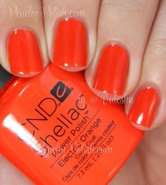 "CND ""Electric Orange"" gel polish/shellac from it Summer 2014 Paradise Collection ! This is a fun, cheery and brilliant orange! Shellac Nail Colors, Cnd Nails, Cnd Shellac Nails Summer, Cnd Colours, Creative Nail Designs, Creative Nails, October Nails, Nails Only, Manicure E Pedicure"