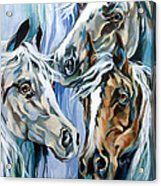 Spirit Horses Painting by Rae Andrews - Spirit Horses Fine Art Prints and Posters for Sale Native American Horses, Horse Artwork, Painted Pony, Horse Drawings, Horse Print, Equine Art, Horse Pictures, Acrylic Art, Animal Paintings