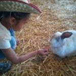 Zoomar's Petting Zoo, in beautiful San Juan Capistrano. We ♥ this place!