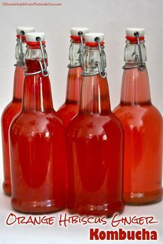 Orange Hibiscus Ginger Kombucha == Divine Health From the Inside Out Kombucha Flavors, How To Brew Kombucha, Probiotic Drinks, Kombucha Tea, Water Kefir, Hibiscus Tea, Fermented Foods, Kraut, Home Brewing