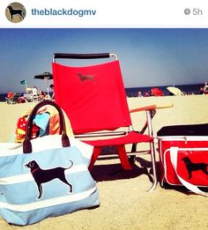 41643a97880d Assemble your beach days with all things Black Dog!