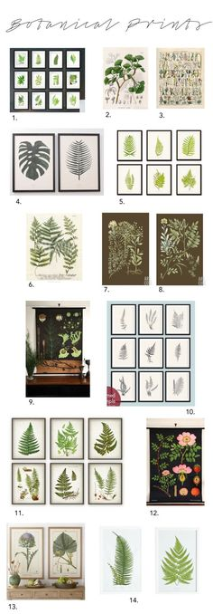 Elements of Style Blog | The Beauty of Botanicals | www.elementsofsty...