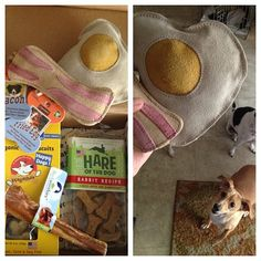 Barkbox // a monthly delivery of dog goodies! That fried egg and bacon chew toy is hilarious...