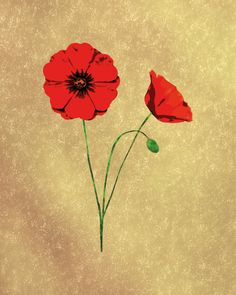 Red Poppies Wall Art Print 8x10 Floral Poster by PRINTANDPROUD Memorial Day Poppies, Red Poppies, Botanical Art, Wall Art Prints, Canvas, Floral, Flowers, Artwork, Poster