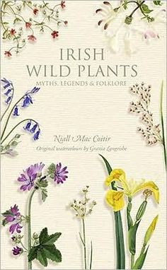 In ancient Ireland there were 365 different parts to the body, and a different plant to cure each part. So the wild plants of Ireland are bound up in our culture...