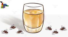 Это средство заставит забыть про комаров, мух, тараканов – уже через 2 часа от нечисти не будет и следа! — Мир интересного