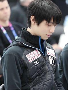 Perfecto Yuzuru