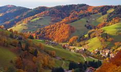 Black Forest Tours Germany | Black Forest Germany Tourism