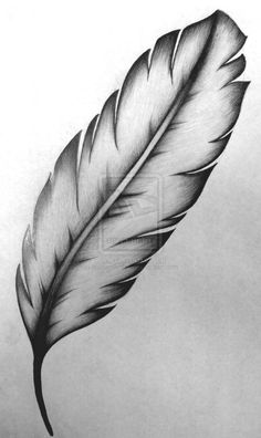by NathanBrittain Feather tattoo design. by NathanBrittain Feather Sketch, Feather Drawing, Feather Tattoo Design, Feather Art, Feather Tattoos, Feather Painting, Daddy Tattoos, Top Tattoos, Pencil Art Drawings