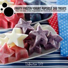 Summer Dog Treats, Frozen Dog Treats, Diy Dog Treats, Homemade Dog Treats, Dog Treat Recipes, Dog Food Recipes, Hypoallergenic Dog Treats, Natural Food Coloring, Block Party