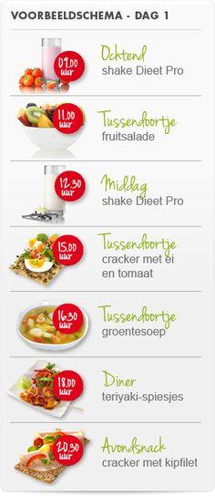 Hoe gebruik je Dieet Pro?