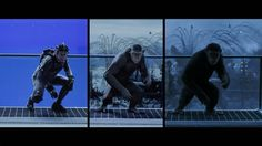 Really cool featurette about the #VFX work by #WetaDigital on #WarForThePlanetOfTheApes: http://www.artofvfx.com/war-for-the-planet-of-the-apes/