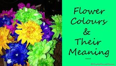 Do You Know The Meaning Behind Each Colour Of Flower?